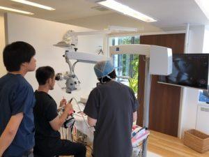 マイクロスコープ,セミナー,精密歯科治療,根管治療,歯の根の治療