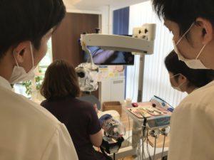歯の根の治療,根管治療,歯内療法,マイクロスコープ,セミナー