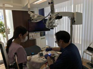 マイクロスコープ、精密歯科治療、根管治療